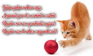 dobroe-novogodnee-utro-2.jpg.pagespeed_ce.xwH8H-fq2c.thumb.jpg.e491e50e17f9d5c3edc2af6bcd6ce24f.jpg