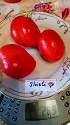 Сердце Ширли, Shirley's Heart