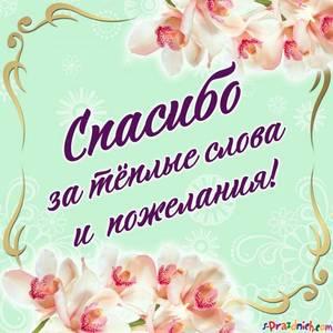 spasibo-za-pozdravleniya-768x768.jpg