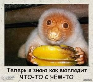 1435930239_61382028.jpg