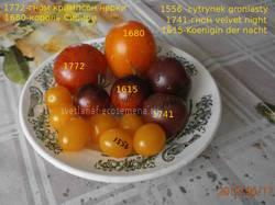 томаты-17-06-19