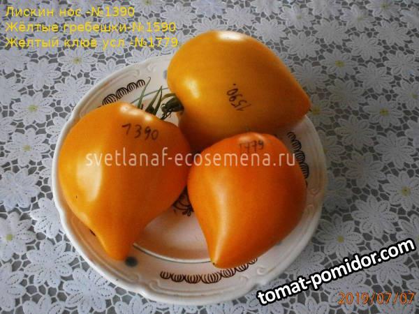 томаты-1390-1779-1590