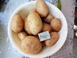 2019-07-05_16-40-07_337 картофель,купленный в магазине.Неожиданно не дорогой и вкусный