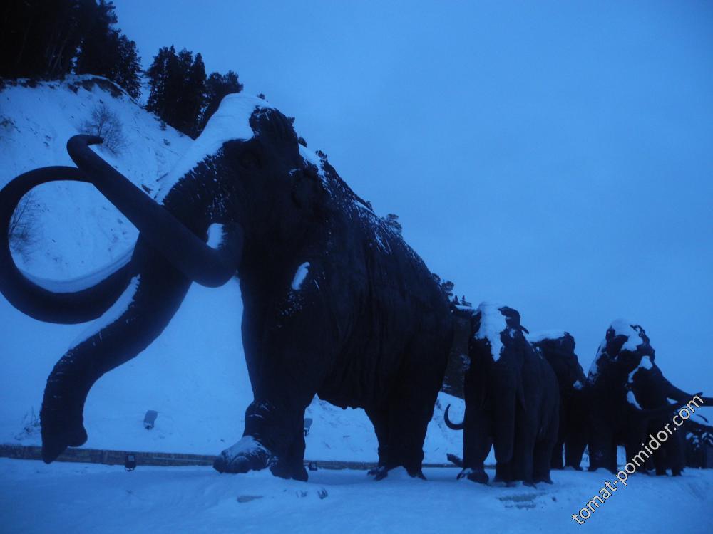 Мамонты в снегу