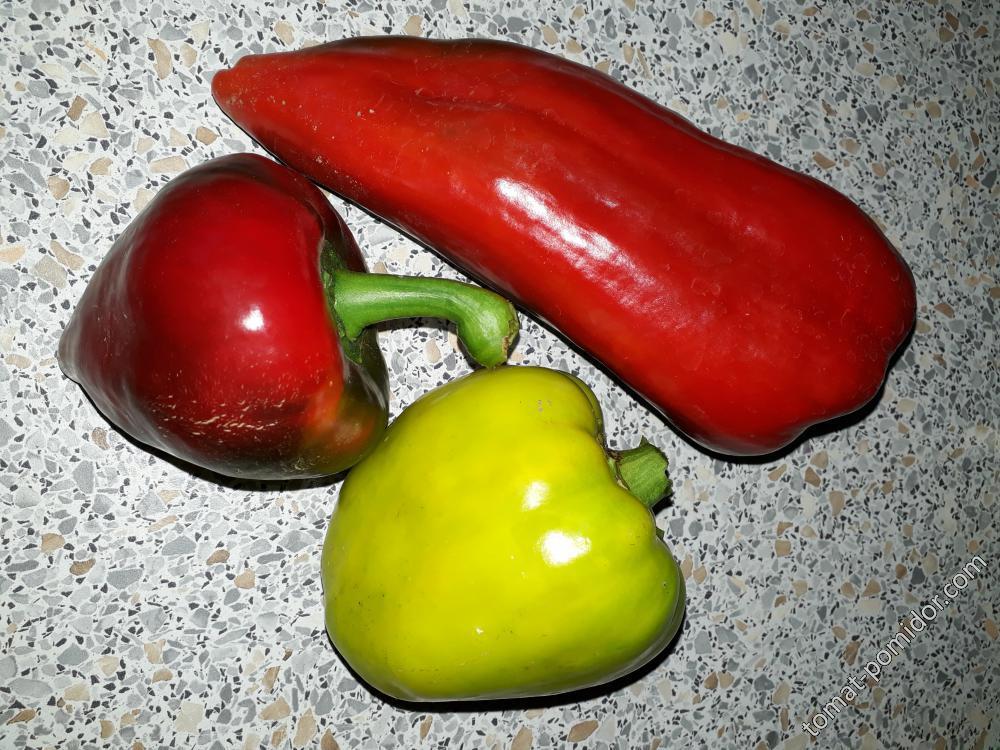 Болгарский красный, Солнышко и Леся
