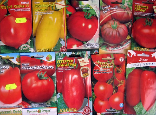 Как правильно собрать и сохранить семена помидоров 26
