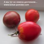 Как собирать свои семена
