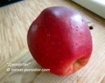 джонотан яблоко