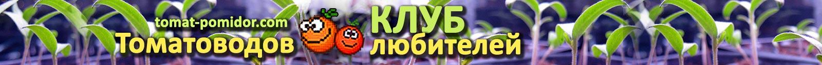 Форум - выращивание томатов, огород, дача