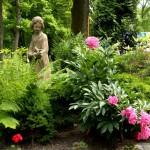 Пионы в дизайне сада – цвета, сочетания, соседи