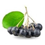 Черноплодная рябина – арония