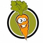 Красивая и крупная морковь