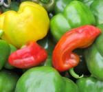 Рейтинг сортов сладких перцев