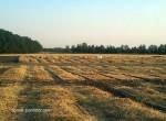 В связи с изобилием соломы на полях использую и её для компостирования.