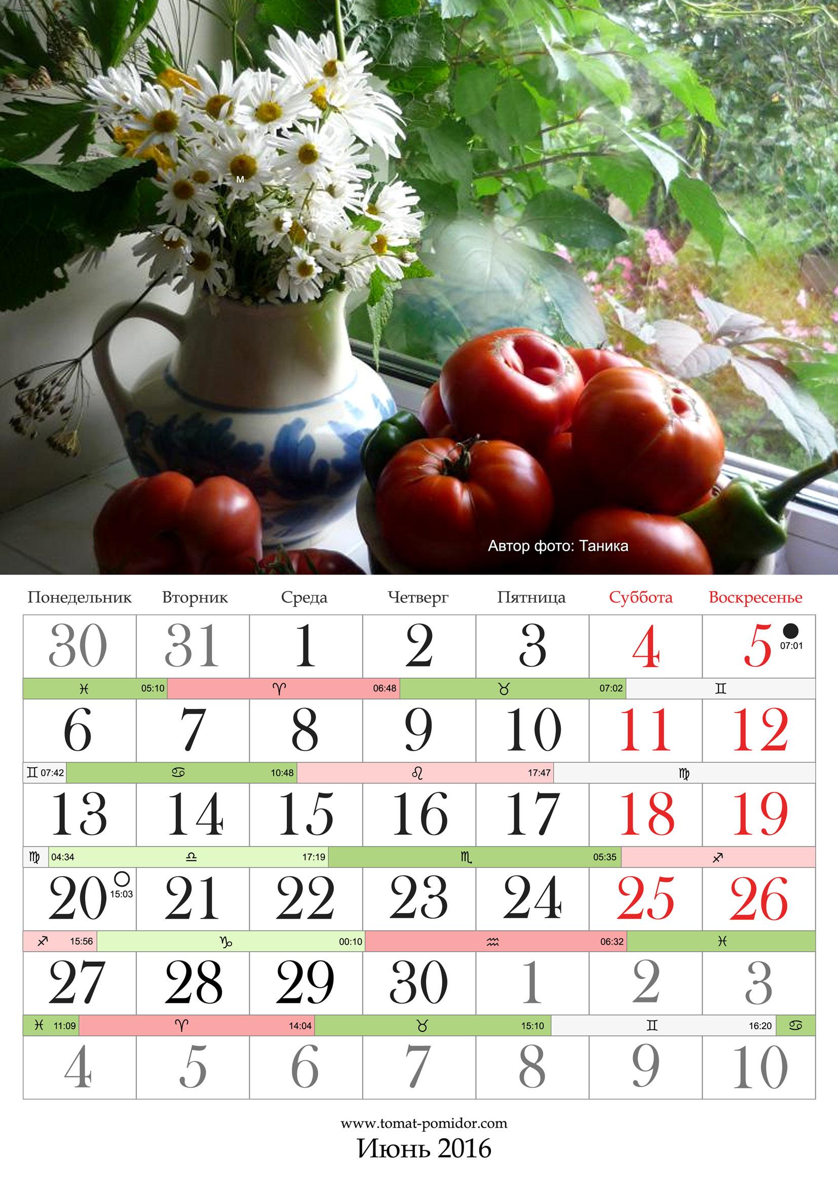 Оплата выходных и праздничных дней украина 2016