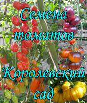korolev1