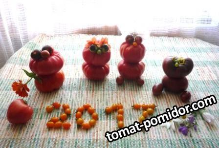 смешные томаты