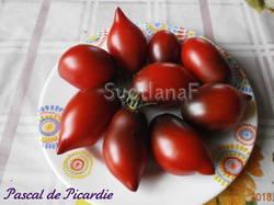 Pascalde Picardie (Паскаль из Пикардии)
