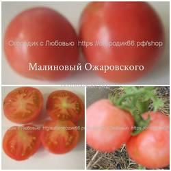 Малиновый Ожаровского.jpg