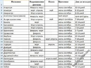 Таблица посев-цветение цветов Однолетники.jpeg