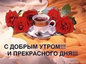 516329259.thumb.jpg.5c426a43374b62a16dc79ecd0acffe5a.jpg