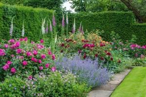 english-style-garden-3.jpg