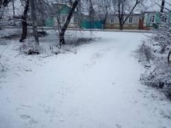 2019-01-22 16-57-22 Первый снег в 2019 г.