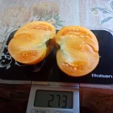 юбилейный оранжевый.jpg