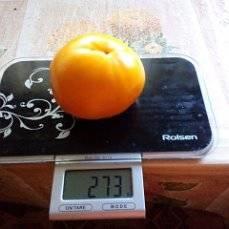 imageЮбилейный оранжевый.jpg