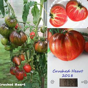 Crushed Heart.jpg