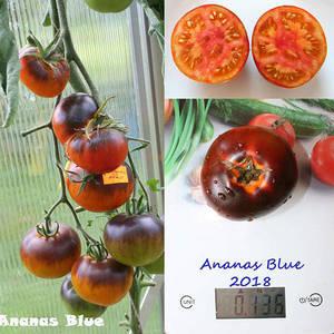 Ananas Blue.jpg