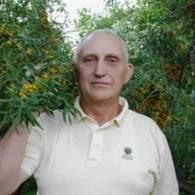 Игорь Печурин