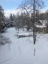 весны хочется... но и зима великолепна на даче