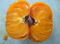 Амана оранж1.jpg