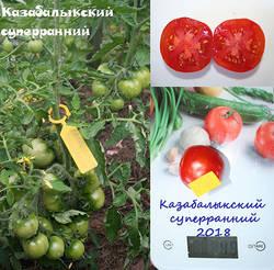 Казабалыкский.jpg