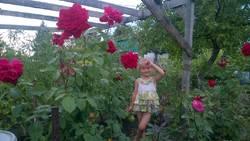 Доча в розах