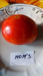 Мамин, Mom's
