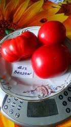 Миссис Бенсон, Mrs. Benson