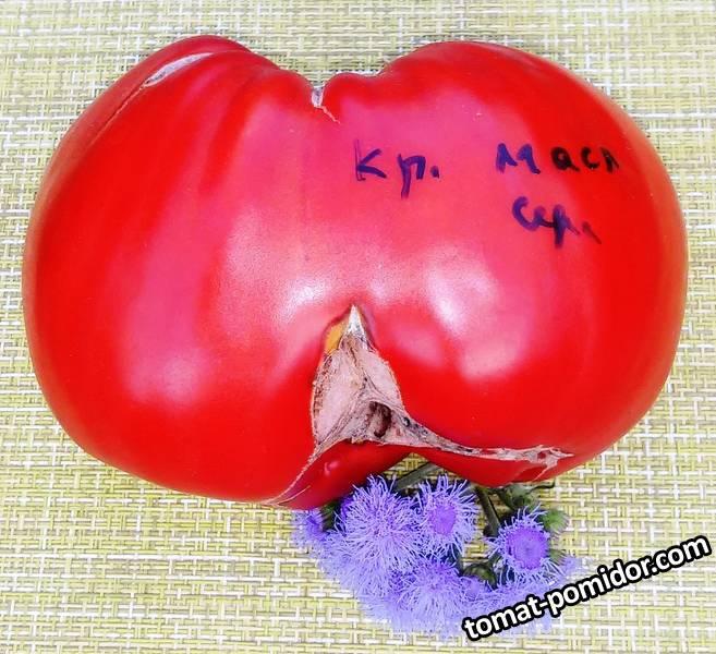 Красное масляное сердце.jpg