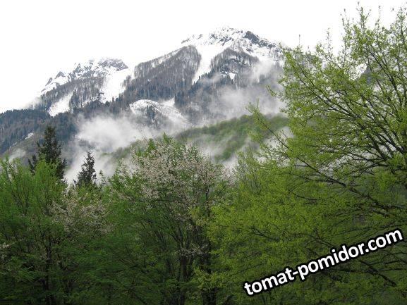 горы в мае