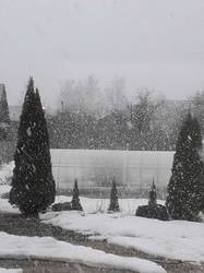 А снег идет...28.03.2019