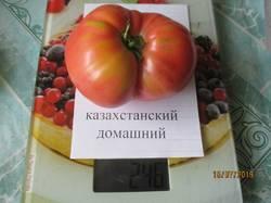 казахстанский домашний.JPG