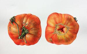 помидор.jpg