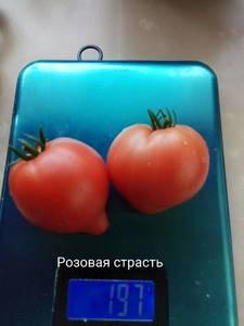 889900669_.thumb.jpg.3b27bde4b1db4951d2bf4d9467673bdc.jpg