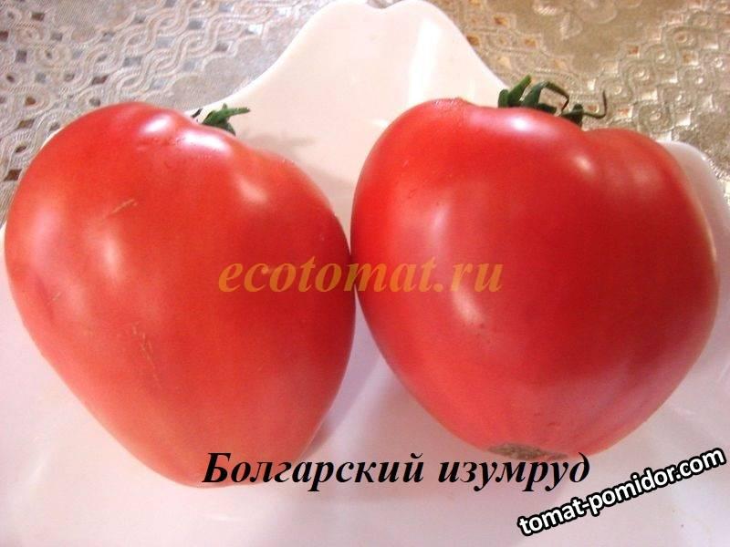 Болгарский изумруд (1).JPG