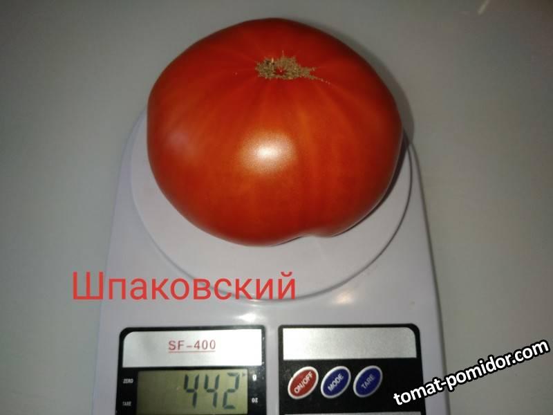 P90812-114802(1).jpg