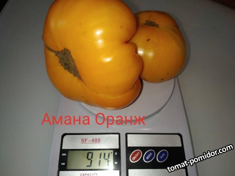 P90812-115111(1).jpg