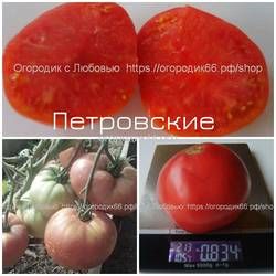 Петровские.jpg
