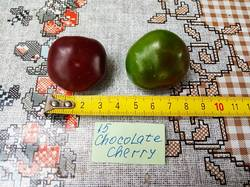 2019-08-17_15-42-23_089 Перец острый CHOCOLATE CHERRY