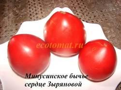 Минусинское бычье сердце Зыряновой (1).JPG